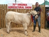 Reserve Champion Charolais in North East Club winner Patrick Hughes (owned by Elizabeth)