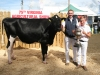 Glanbia In-Calf Champion winner was Clayton Coulter with nephew Ben Gillanders with the cup
