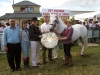Champion In-Hand winner was Donaghmore Connemara Ponies (Kells) with Pat Lynch, Denise and George Gruea and judges Jane Somerville and Trish Hoey presenting the Cranston Trophy