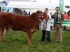 Reserve Limousin Champion was won by Karl Connell with judge James Callion