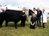 Champion Angus was won by John McEnroe (Oldcastle) with Aideen and Niamh (front) judge Cathal McCormack (Roscommon) and steward Patrick Logan