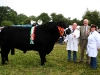 Champion Aberdeen Angus was won by Owen McFadden and Angela Armstrong (Gibstown) with judge Cathal Duignan